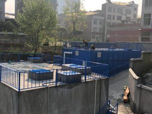 广东电镀污泥处理处置